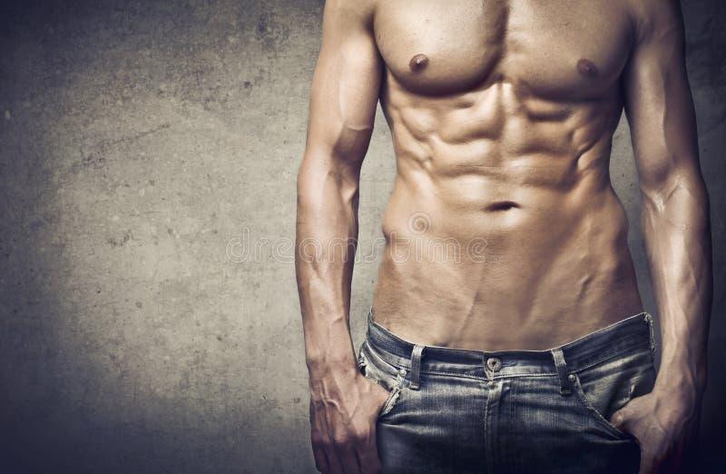 Homme musculaire photos libres de droits