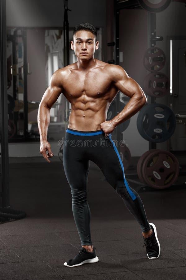 Homme musculaire asiatique sexy posant dans le gymnase, abdominal formé ABS nu masculin fort de torse, établissant images stock
