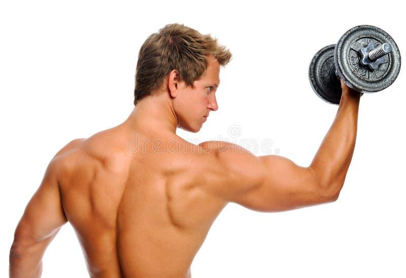 Homme musculaire avec l'haltère images libres de droits