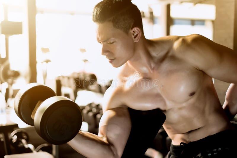 Homme musculaire de bodybuilder photos libres de droits