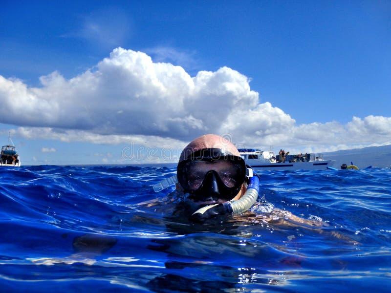 Homme naviguant au schnorchel dans les eaux tropicales chaudes photos libres de droits