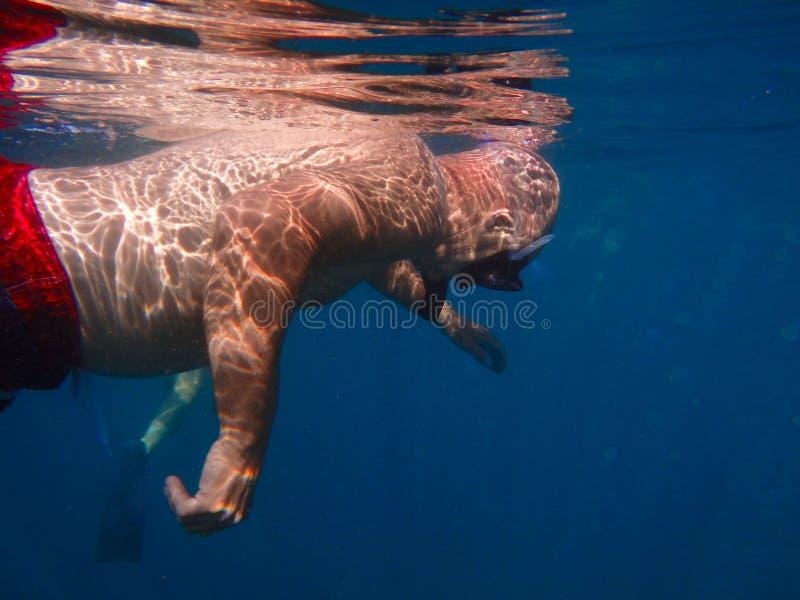 Homme naviguant au schnorchel dans les eaux tropicales chaudes images libres de droits