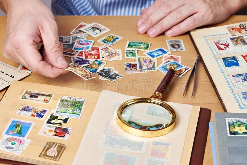 Homme observant une collection de timbres-poste photo libre de droits