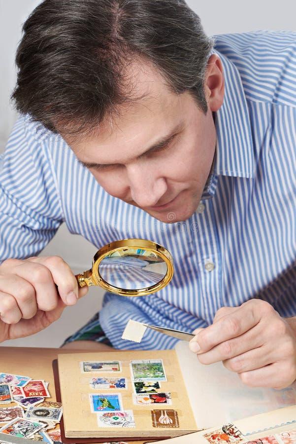 Homme observant une collection de timbres-poste images libres de droits