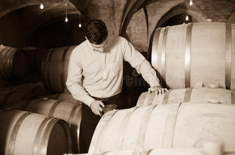 Homme posant dans la cave d'établissement vinicole photo libre de droits