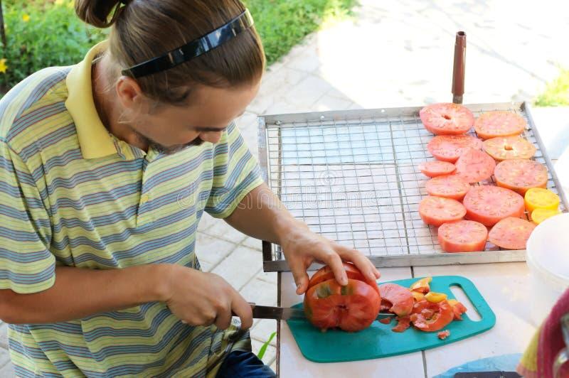 Homme préparant la tomate pour le séchage photo stock
