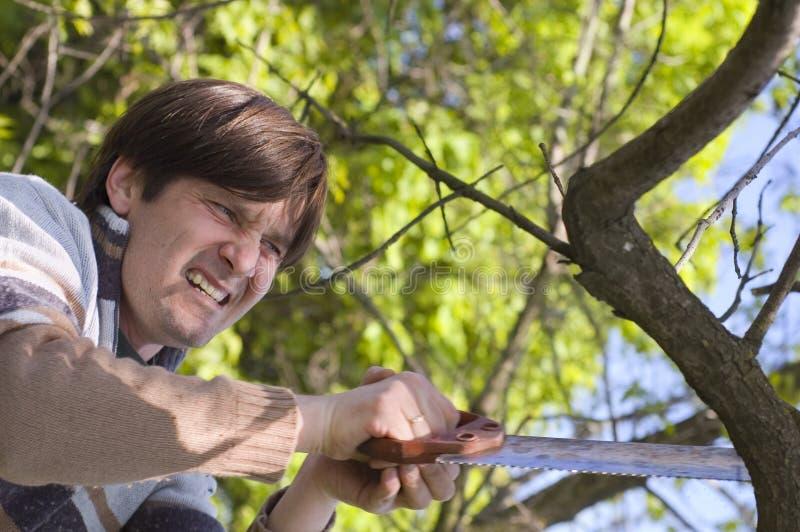 Homme sciant un branchement avec ardeur image stock