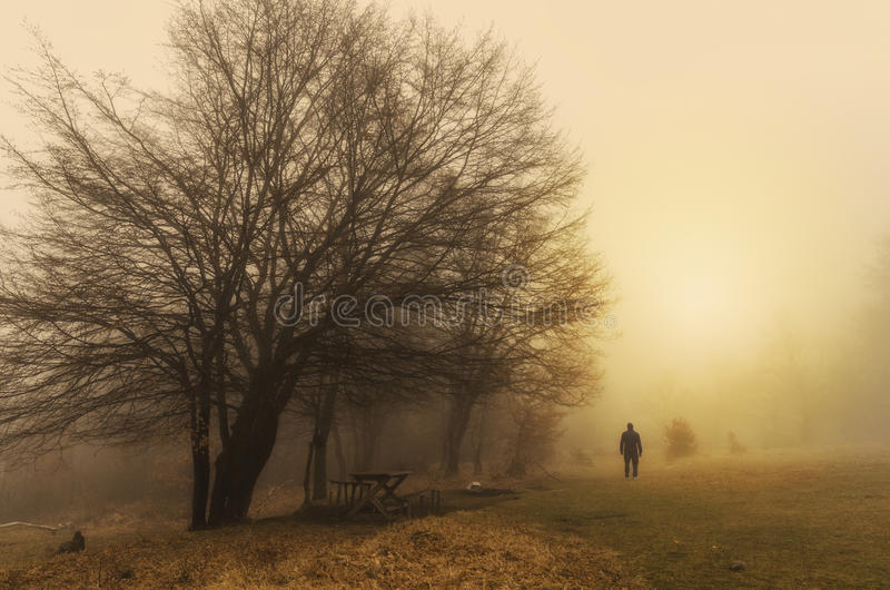Homme seul en nature images libres de droits
