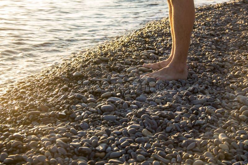 homme seul marchant sur le Pebble Beach dans le coucher du soleil photographie stock