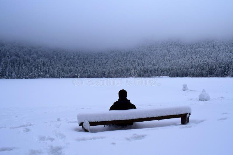 Homme seul s'asseyant sur un banc couvert dans la neige à un lac congelé images stock