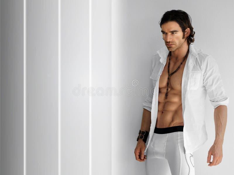 Homme sexy photo stock