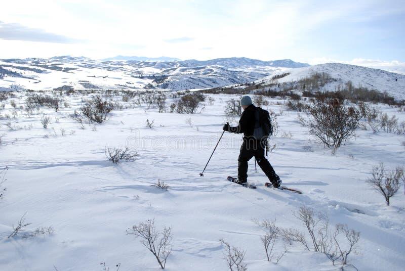 Homme Snowshoeing dans le paysage d'hiver pour la récréation image libre de droits
