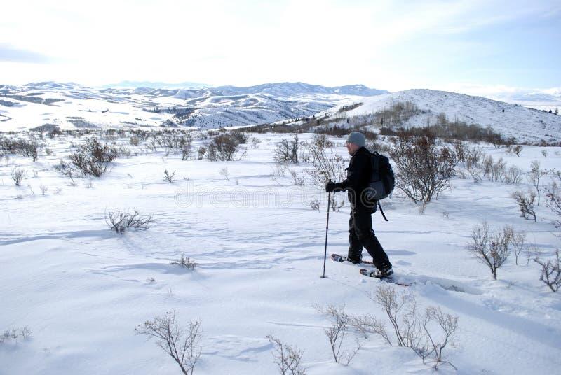 Homme Snowshoeing dans le paysage d'hiver pour la récréation photographie stock libre de droits