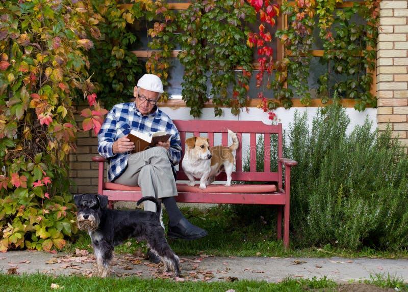 Homme supérieur avec le livre et les chiens photographie stock