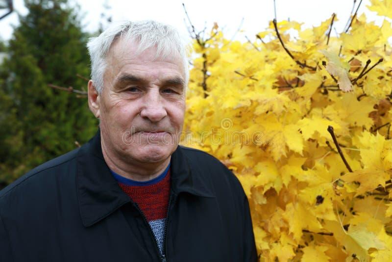 Homme supérieur en parc d'automne image libre de droits