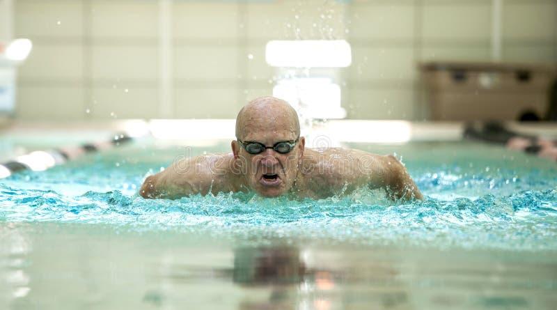 Homme supérieur nageant competitivement images stock