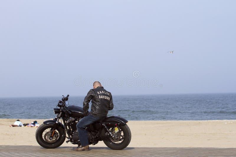 Homme sur un Harley photos libres de droits