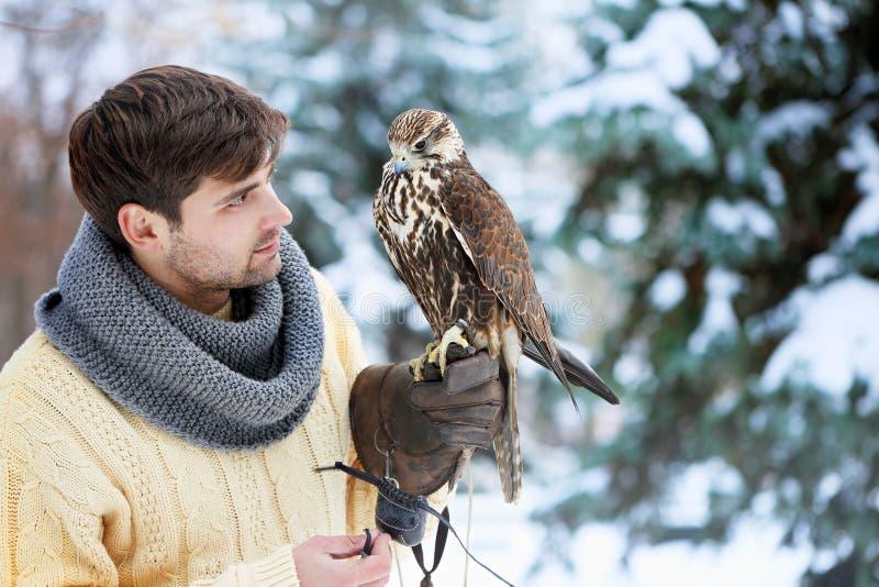 Homme tenant un faucon images stock
