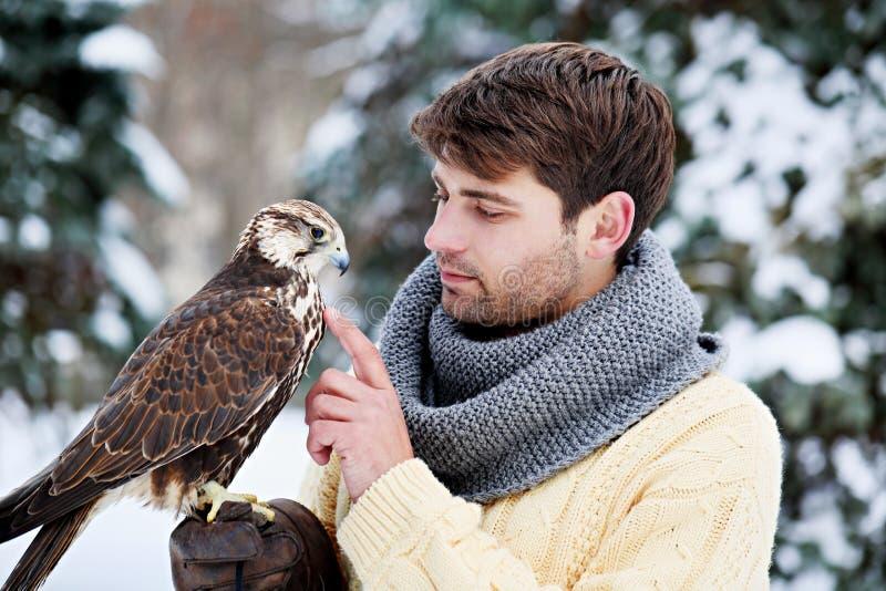 Homme tenant un faucon images libres de droits
