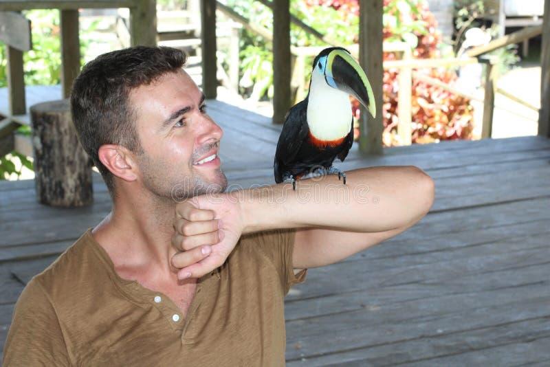 Homme tenant un oiseau coloré de toucan photographie stock