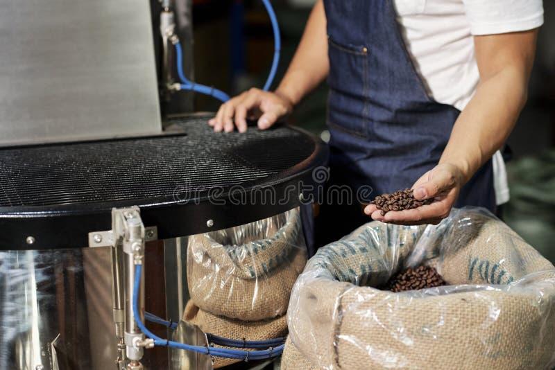 Homme travaillant avec la qualit? du caf? image stock