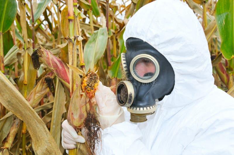 Homme travaillant dans le gaz-masque photos stock