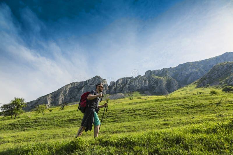 Homme trimardant en montagnes vertes photo stock
