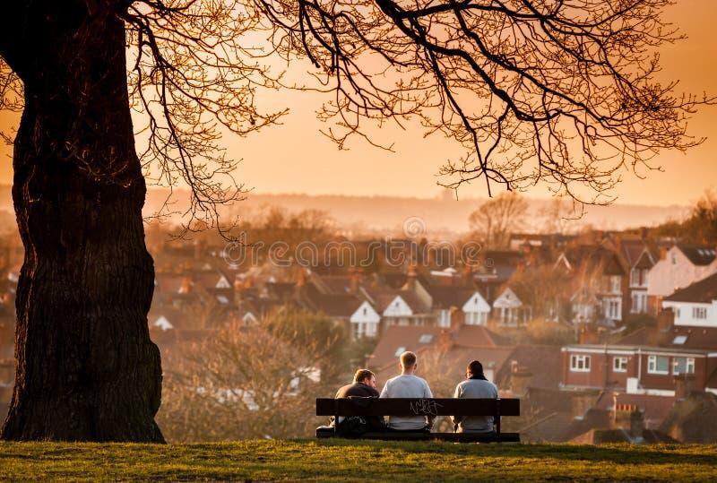 Homme trois sur un banc en parc photos libres de droits