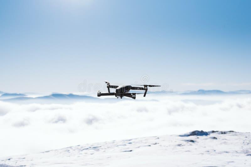 Hommel in de lucht boven de bergketting op een zonnige dag stock fotografie