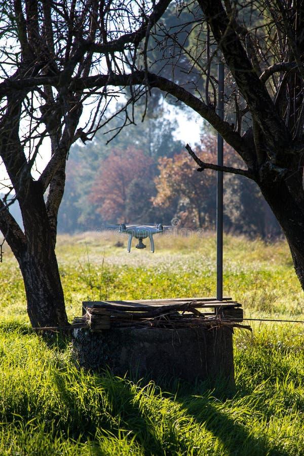 Hommel over waterput en onder boom op zonnige de winterochtend stock afbeeldingen