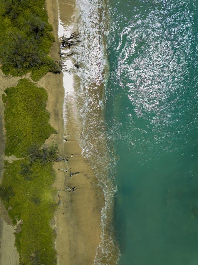 Hommeltop down mening van het glasheldere water, de verpletterende golven, en natuurlijke beachs van de Lahaina-Kust op het Eilan royalty-vrije stock foto's
