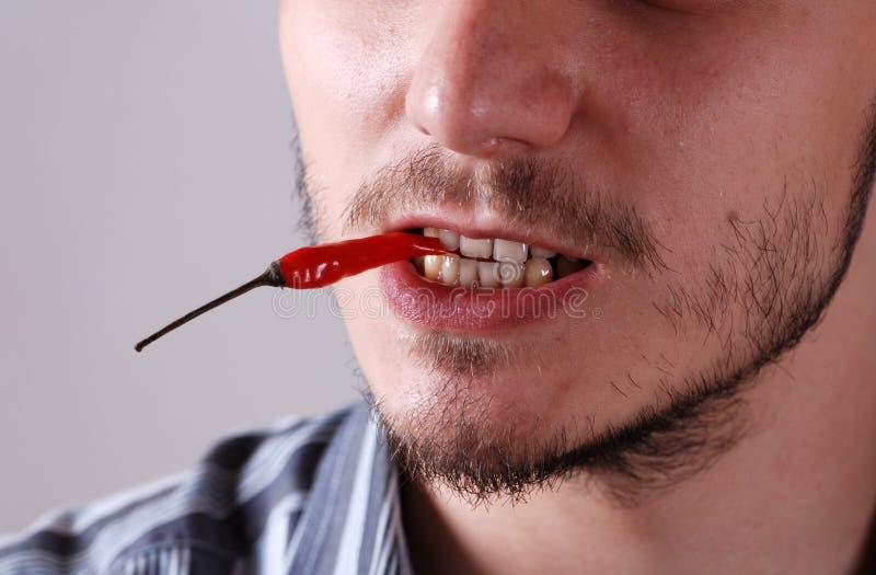 Hommes avec le /poivron rouge images stock