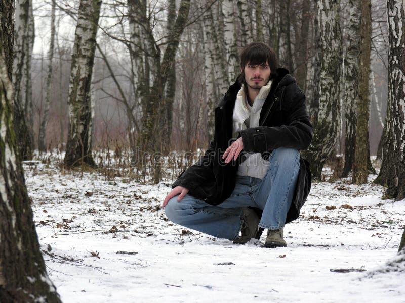 Hommes. bois de l'hiver photographie stock
