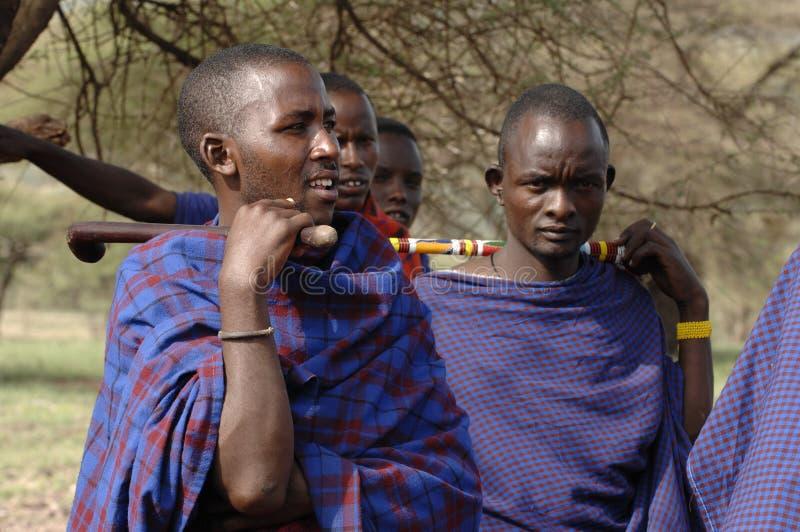 Hommes d'un maasai de verticale de groupe. photos stock