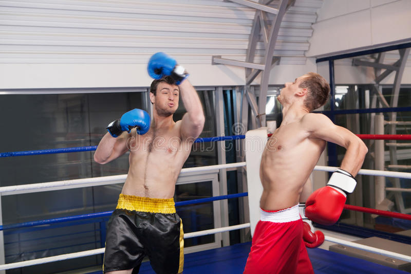 Hommes kickboxing. photographie stock