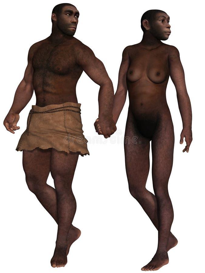 homo erectus διανυσματική απεικόνιση