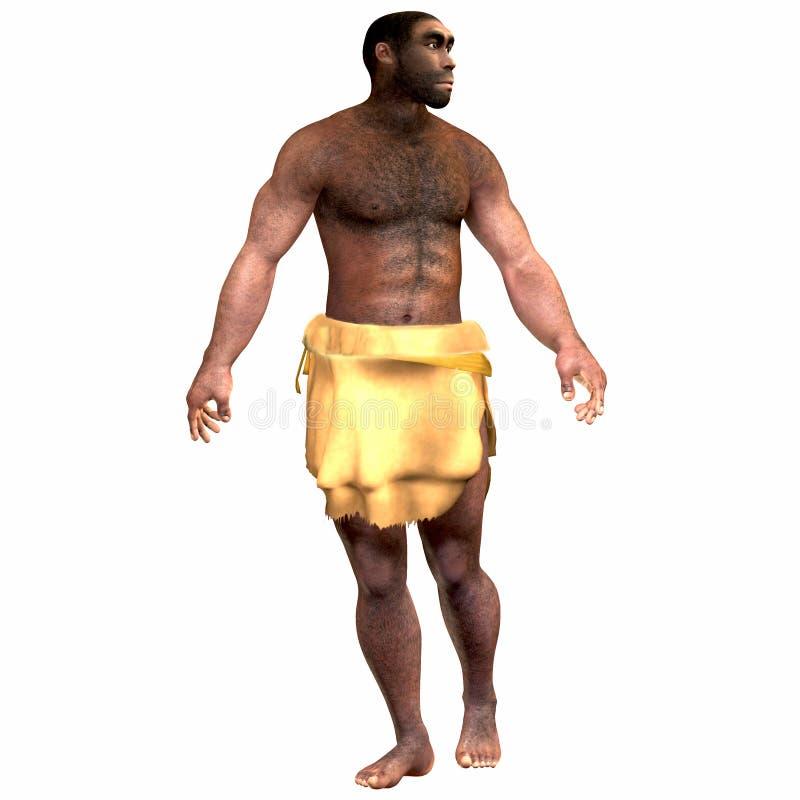 Homo erectus-Mannetje vector illustratie