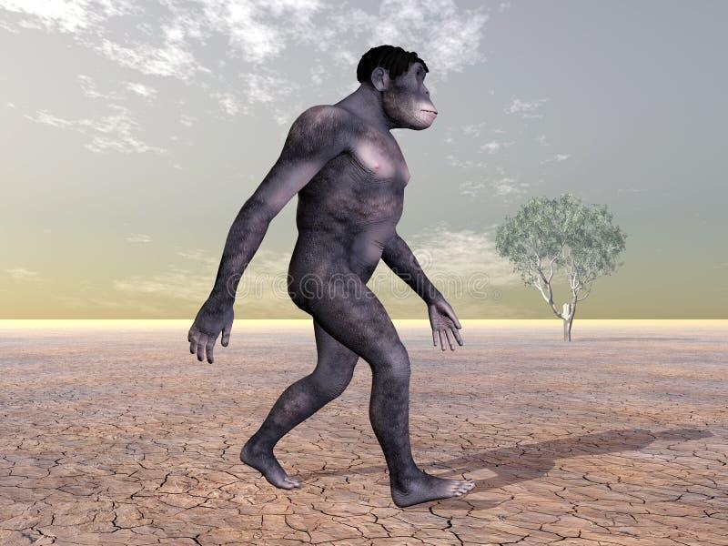 Homo Habilis - menschliche Entwicklung vektor abbildung