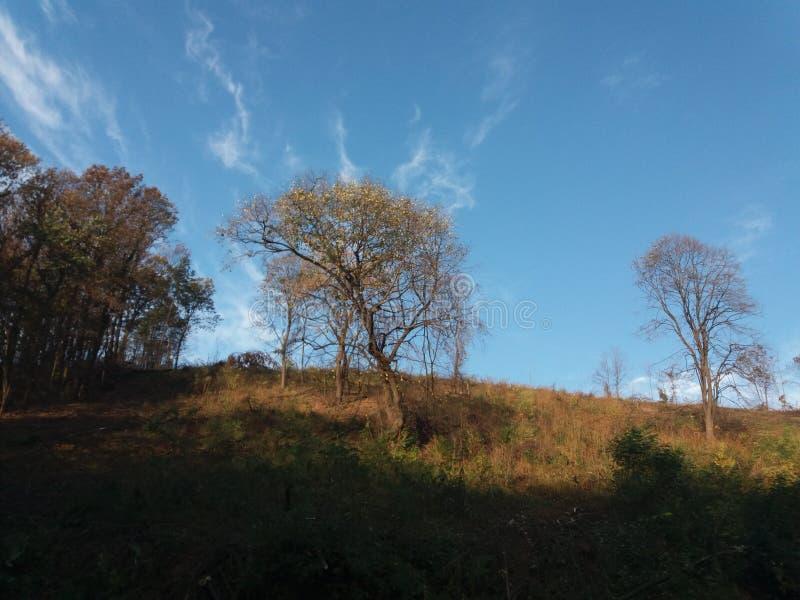 Homolje region w wschodnim Serbia obrazy stock