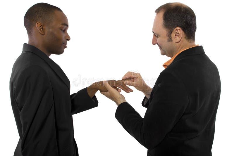 Homosexuelle Ehe lizenzfreie stockbilder