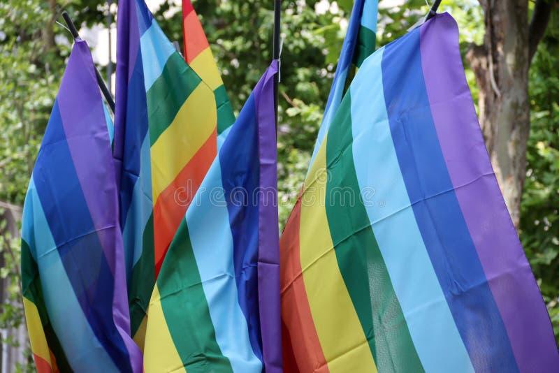 Homosexueller Stolz lizenzfreie stockfotos