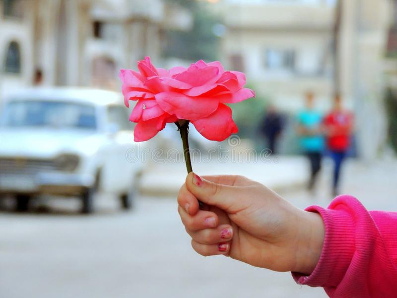 Homs miasto w Syrii obrazy stock