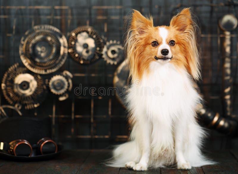 Hond in de stijl van steampunk stock afbeeldingen