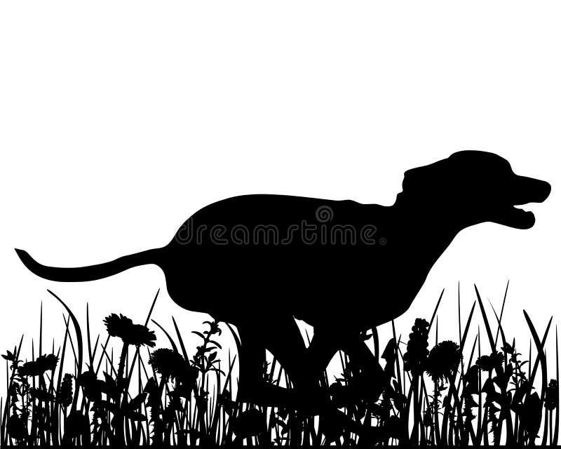 Hond in de weide stock illustratie