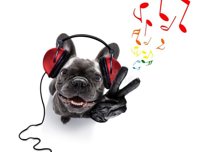 Hond die aan muziek luistert stock afbeeldingen