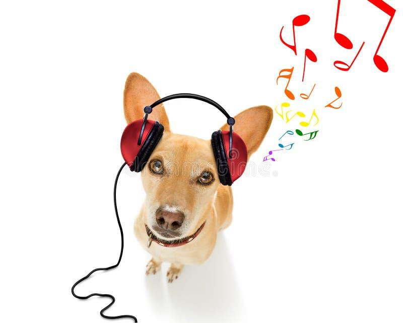Hond die aan muziek luistert stock foto