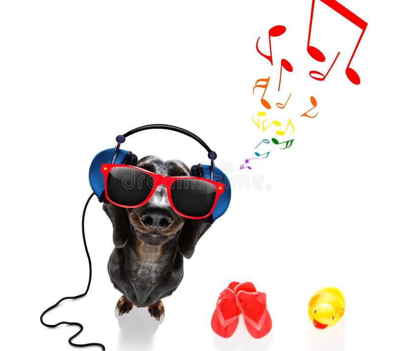 Hond die aan muziek luistert stock foto's