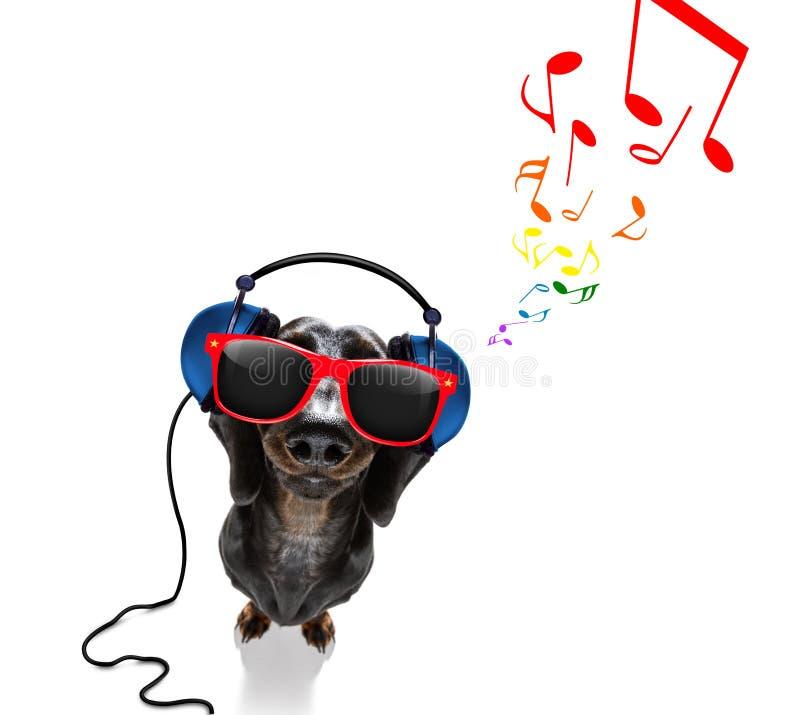Hond die aan muziek luistert royalty-vrije stock fotografie