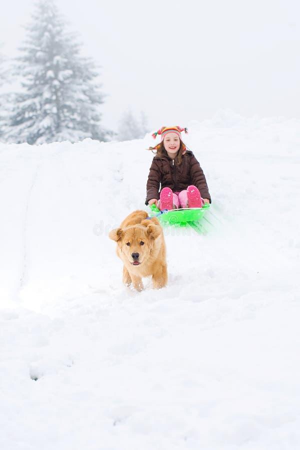 Hond die kind op een slee trekt royalty-vrije stock foto