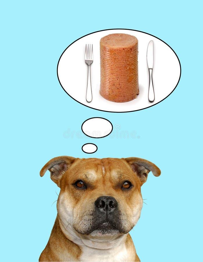 Hond die over diner denkt stock foto